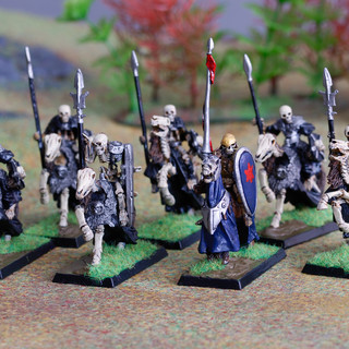 Skeletal cavalry / Black Knights from RAFM lead by a Wight King