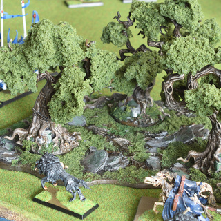 Citadel Wood with LukesAps foliage